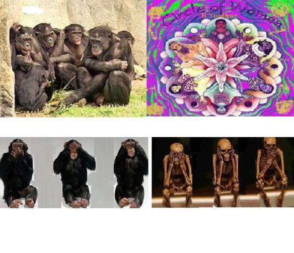 bonobosz be know how to be goddesszesz chimp$ no nothing be gone