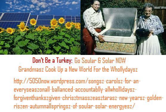 soularsolarpanelszwithsunflowersz&grandmaszsolarcooker
