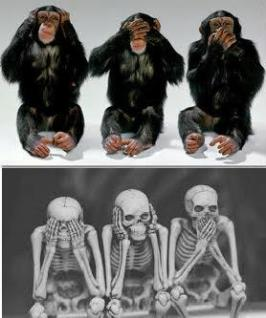 blinddeafanddumbchimps