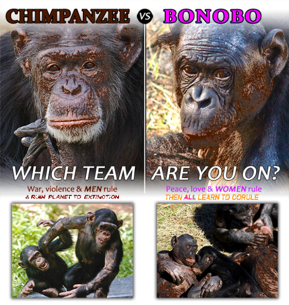 bonobo or chimpanzee which team are you on